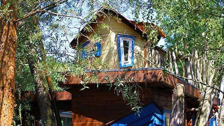 Aurveda im Baumhaus